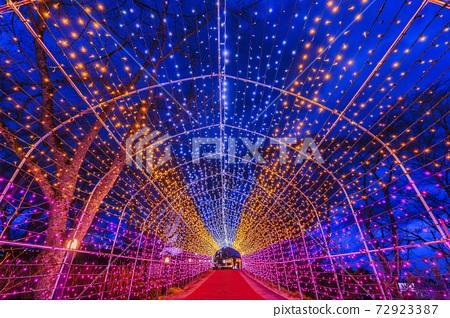 船岡 성지 공원의 일루미네이션 Shibata Fantasy Illumination 2020 72923387