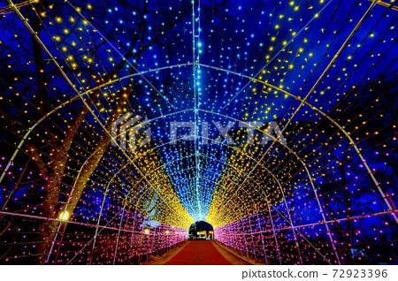 船岡 성지 공원의 일루미네이션 Shibata Fantasy Illumination 2020 72923396