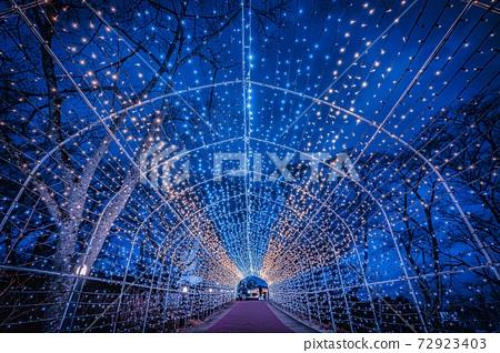 船岡 성지 공원의 일루미네이션 Shibata Fantasy Illumination 2020 72923403