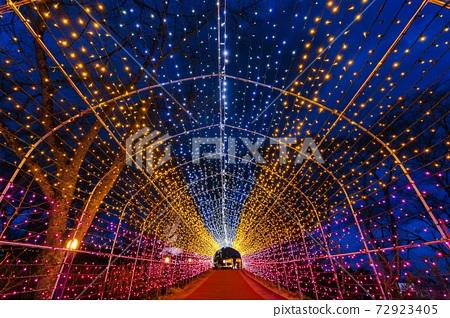 船岡 성지 공원의 일루미네이션 Shibata Fantasy Illumination 2020 72923405