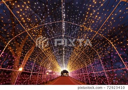 船岡 성지 공원의 일루미네이션 Shibata Fantasy Illumination 2020 72923410