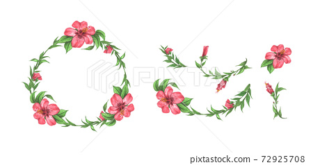 Set of floral branch. Beautiful wreath. Watercolor illustration. 72925708