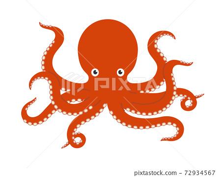 章魚的插圖 72934567