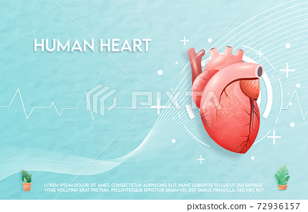 Human heart and treatment watercolor style. A concept hospital for wallpaper and web.	 72936157
