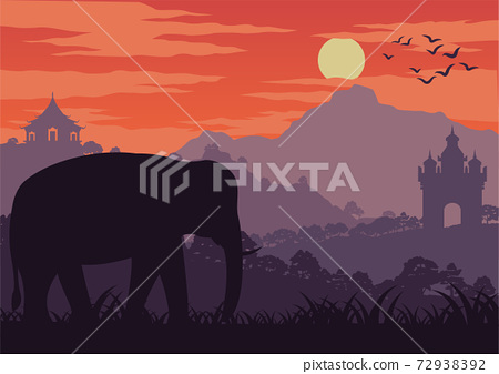 elephant symbol of Thailand and Laos walk in wood near landmark 72938392