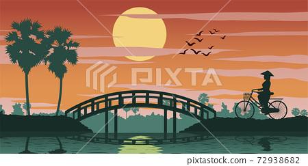 Vietnamese woman ride bicycle pass rice field on sunset time,bridge ahead 72938682
