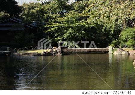 Yasukuni Shrine Kamiike Garden 72946234