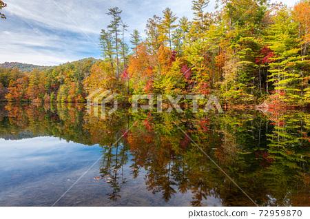Lakeside Fall Foliage 72959870