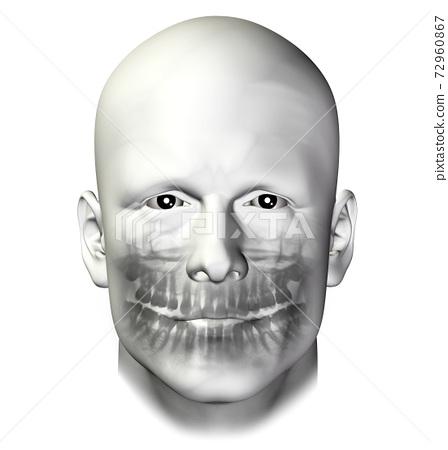 teeth dental scan adult male 72960867