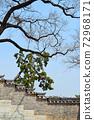 전통건축물 창덕궁 풍경 72968171