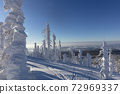 wind and weather shaped abstract snow sculptures attached to trees at Mount Lusen 72969337