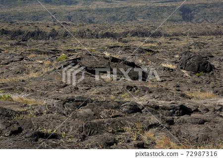 하와이 hawaii 72987316