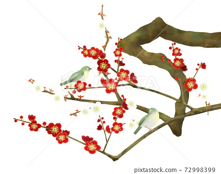 Red plum blossoms and white-eyes-there are multiple variations 72998399