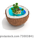 tropical island in coconut 73003841