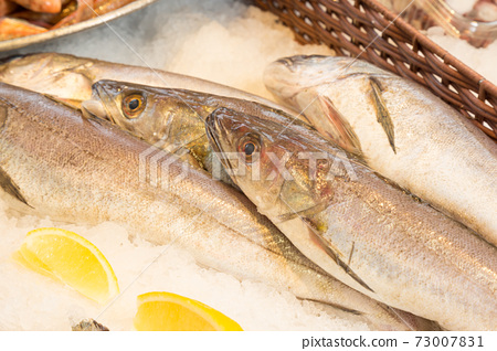 Fresh hakes at a fishmonger 73007831