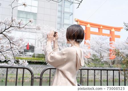 봄의시기에 교토 히가시야마 관광 도중 스마트 폰으로 촬영하고있는 여성 73008523