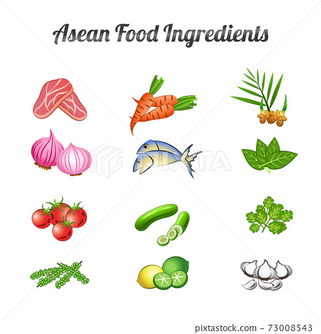 asean food ingredients set bundle include vegetables and meat in gradient cartoon design 73008543