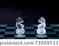 A knight confronting on the chessboard. Gray-scale 73009513