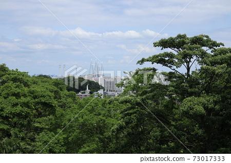 쿠 산정 공원과 요코하마 베이 브릿지 방면의 조망 (요코하마시 나카 구) 73017333