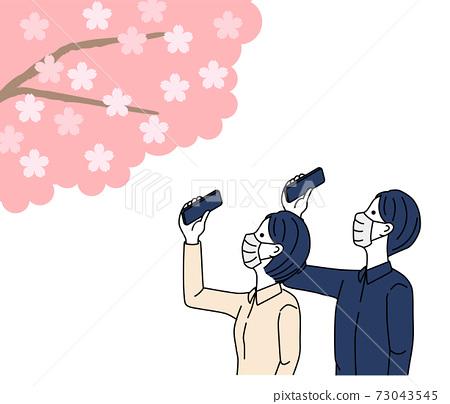 벚꽃, 스마트폰, 커플 73043545
