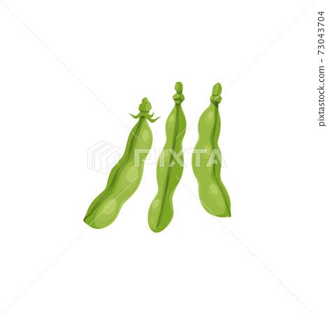 Green peas, bean pods, farm agriculture plant icon 73043704