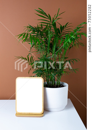 Wooden frame copyspace and green plant on white table with dark orange wall background 73052282