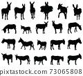 Black silhouettes of donkeys on white background 73065808