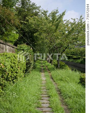 A walking path covered with greenery at Tsutenhama 73072044