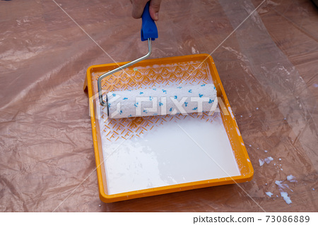 Paint tray with a paint roller 73086889