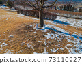 Snowman melting in the winter sun 73110927