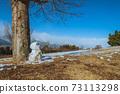 Snowman melting in the sun 73113298