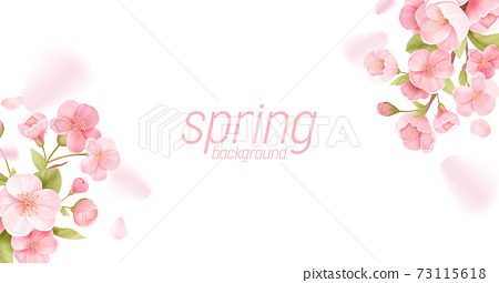 Sakura flowers realistic floral banner. Cherry blossom vector greeting card design. Spring flower illustration 73115618