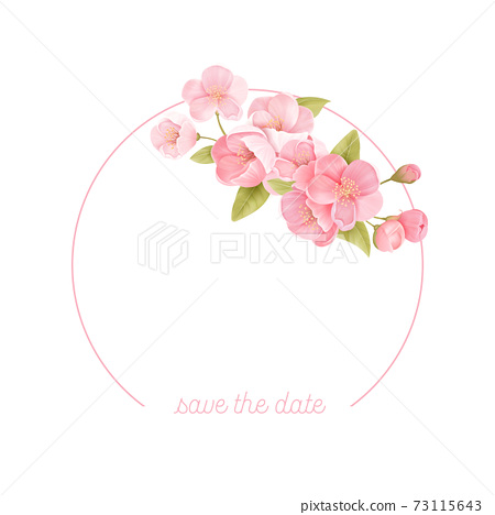 Sakura flowers realistic floral frame banner. Cherry blossom vector wedding card design. Spring flower illustration 73115643
