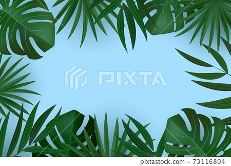 Natural Realistic Green Palm Leaf Tropical Background. Vector illustration EPS10 73116804
