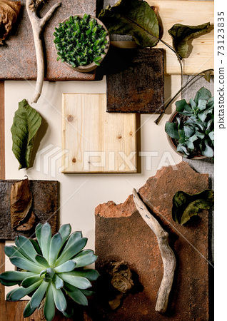 Creative layout squares with plants 73123835