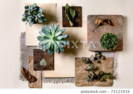 Creative layout squares with plants 73123838