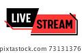 Live Stream, Banner. Video News Broadcasting, Vlog Streaming or Tv Screen Presentation Emblem. Online Channel Live Event 73131376