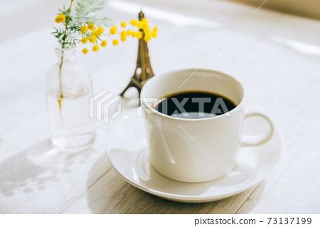 커피와 미모사 73137199