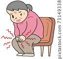 Knee pain / osteoarthritis of the knee 73149338