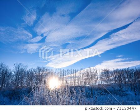 冬季景观 73150447