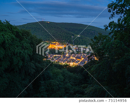 View of the city of Heidelberg at blue hour 73154956