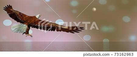 Eagle flying - 3D render 73162963