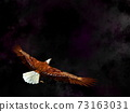 Eagle flying in the universe - 3D render 73163031