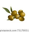 Green olives with leaves on a white background. 73170031