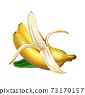 Composition of three ripe bananas with a green leaf. 73170157