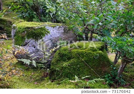 아라시야마의 일본 정원 73170842