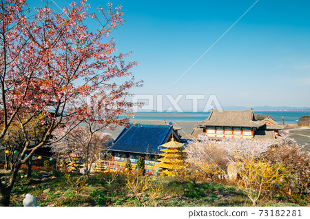 Panorama view of Anmyeonam temple and sea at spring in Anmyeondo Island, Taean, Korea 73182281