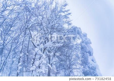 안개 눈이 내리는 숲의 풍경 야마가타 현 야마가타시 73182458