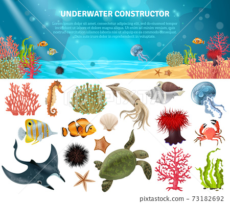 Sea Life Constructor Isolated Icons Set 73182692