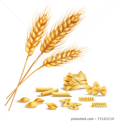 Realistic Wheat Spikelets And Pasta 73183210